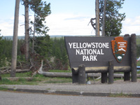 Welcome to Yellowstone!